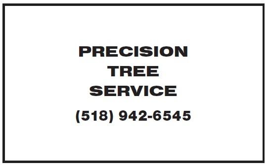 Precision Tree Service 2019